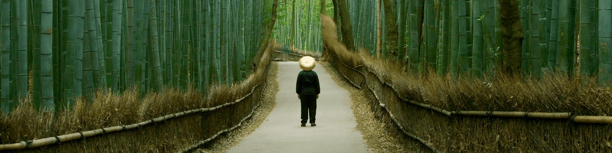 A man standing in a Japanese forest