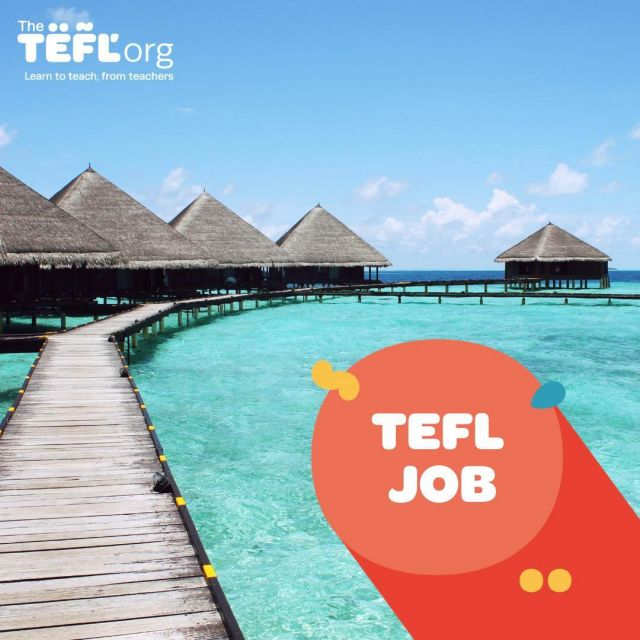 Have you gained your TEFL qualification with us and now you are searching for that perfect TEFL job? 🌎⁠ ⁠ Are you looking to teach in Vietnam? 🇻🇳⁠ ⁠ Location: Hanoi, Vietnam⁠ Contract Length: 9 Months⁠ Job Type: Full Time⁠ Age Group: Young Learners, Teenagers⁠ School Type: Primary⁠ Pay: 540,000 - 600,000VND Per Hour 💰⁠ Accommodation Included: No, but assistance provided⁠ Start Date: 16th Aug 2021⁠ Application Deadline: 31st Jul 2021⁠ Degree Required? Yes ✔️⁠ ⁠ Find out more and apply today - Link in bio 🔗